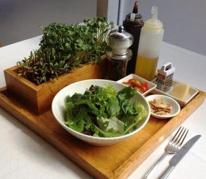 Live Micro Green Salad